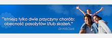 intruz.pl